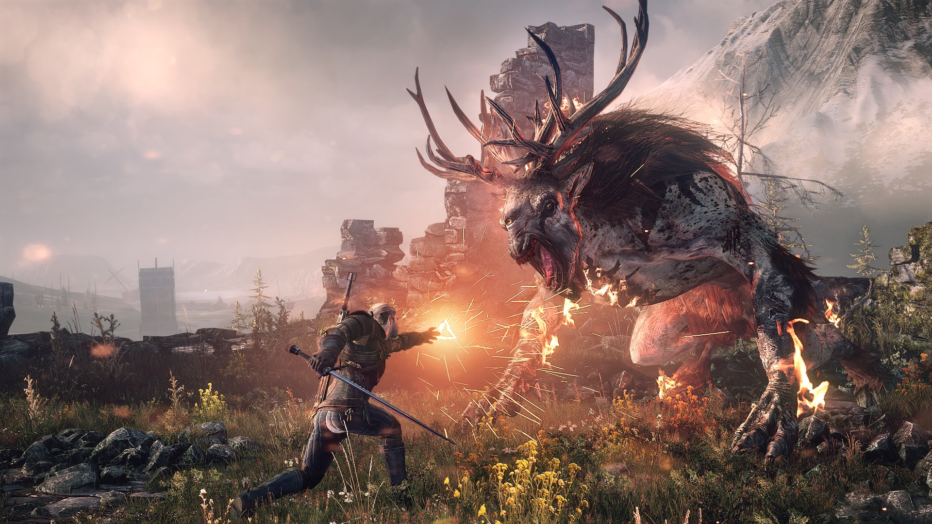 Combate Witcher 3