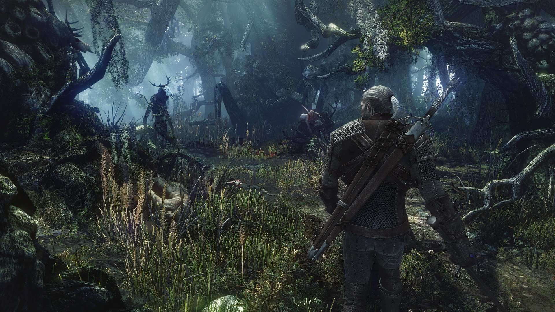 Bosque Witcher 3