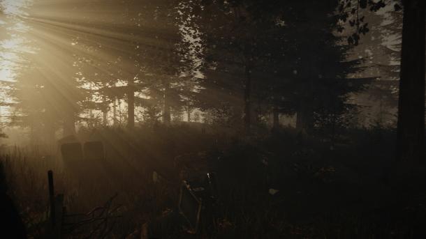 The Forest recuerda mucho a aquella isla.
