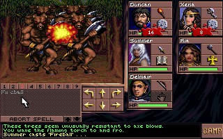 Eye of the Beholder III - Strategic Simulations - DOS
